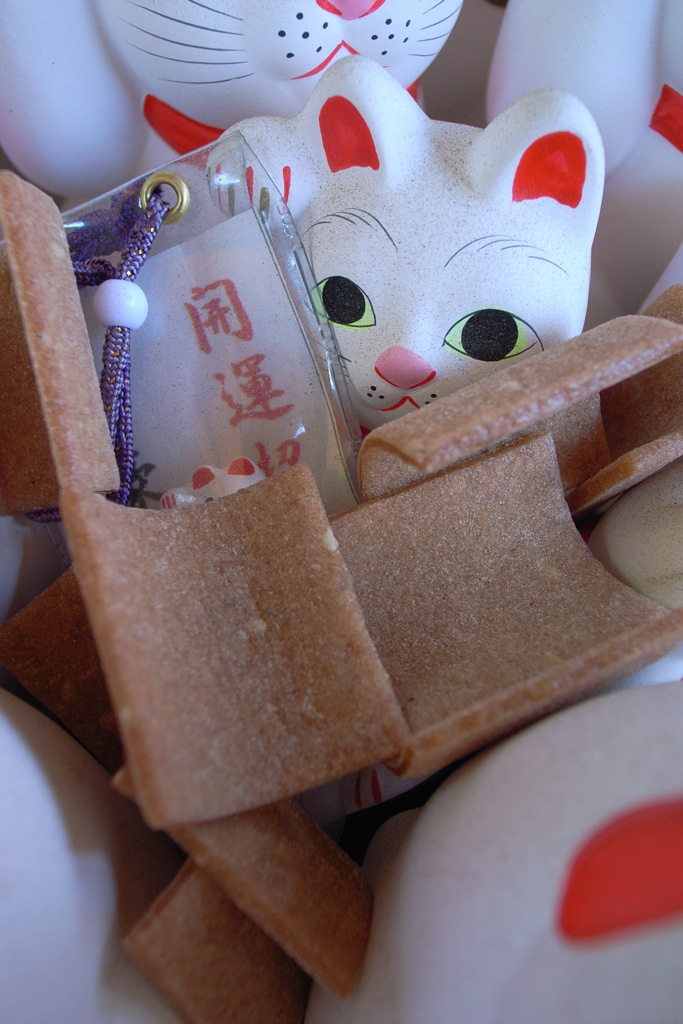 YATUHASI and MANEKINEKO