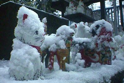 1998年の雪の日