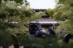 豪徳寺香台