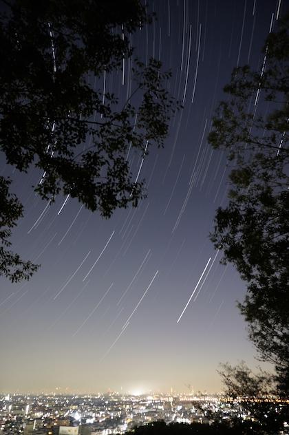 しし座流星群 16 Nov 2013