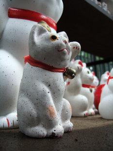 雨の日の招き猫はとことんだるい FinePixF10 1/9sec F2.8 8mm ISO200 -0.3