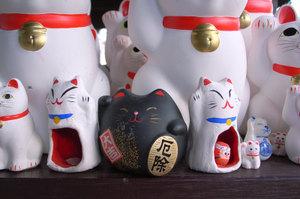 黒丸君とカンガル猫 GR DIGITAL F2.4 1/45sec IS64 -0.3EV