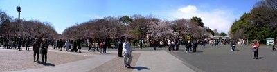 上野公園パノラマ