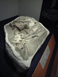 マジュンガサウルス