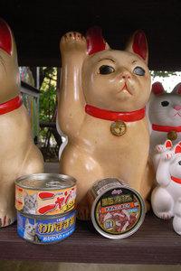 招き猫ときどき猫缶 GR DIGITAL F2.4 1/32sec ISO81
