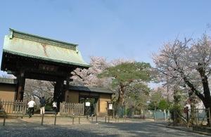 豪徳寺正門前