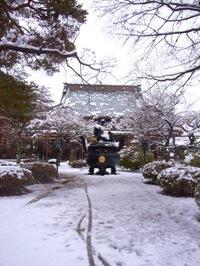 雪の日の豪徳寺の香炉