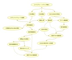 ウィグナルによる絶滅への連鎖モデル サムネイル