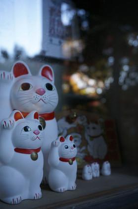 豪徳寺紅葉 招き猫のショウケースと 22Nov2013